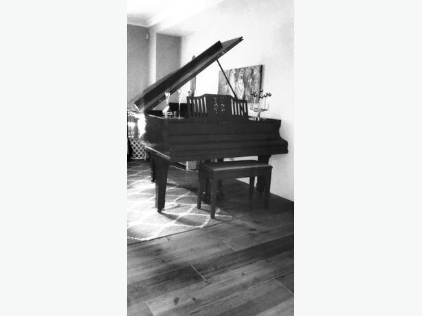 Piano Lessons In Whangaparoa
