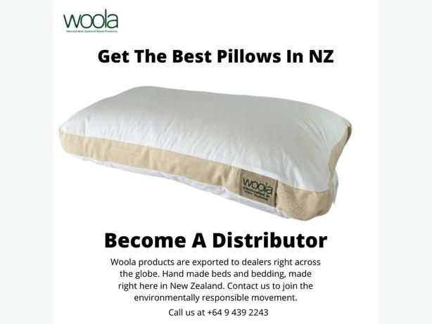 Best Pillow For Neck pain in Auckland