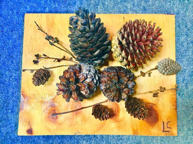 Pine Cones Art Wall decor Ashburton, www