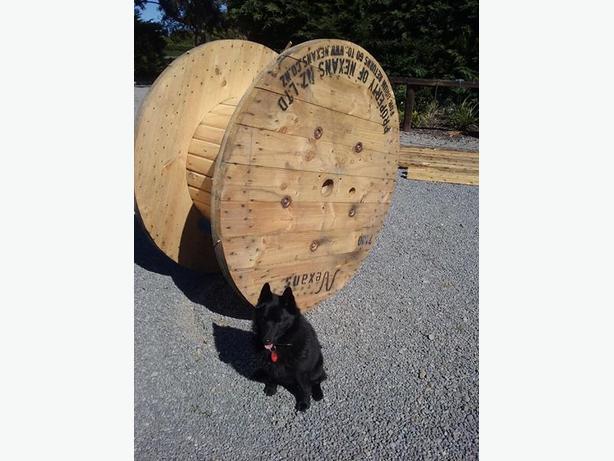 1 super big cable drum