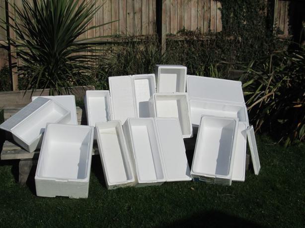 1 chiller cool styrofoam transport fish tank box